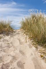 Düne am Strand von Tisvildeleje 6