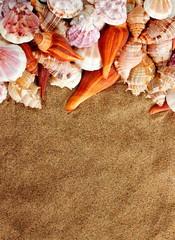 conchiglie e sabbia