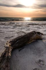 Abandoned beach sunset background