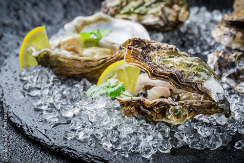 Fotobehang Schaaldieren Tasty oysters on ice with lemon
