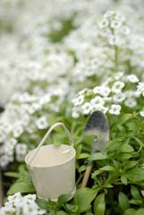 雑貨のバケツとスコップと白い花