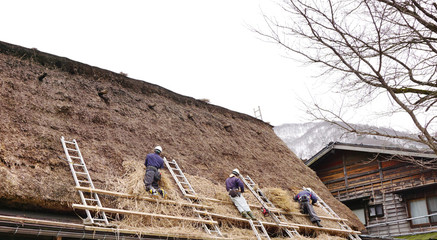 Local craftman changing the straw roof in Japan