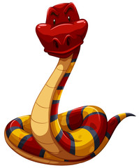 Colourful snake