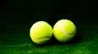 tennis ball - 79932188