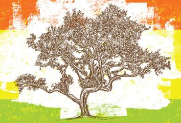 Sketchy Oak tree