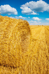 close up view on bale of straw and harvested field