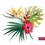 Nice tropical flowers
