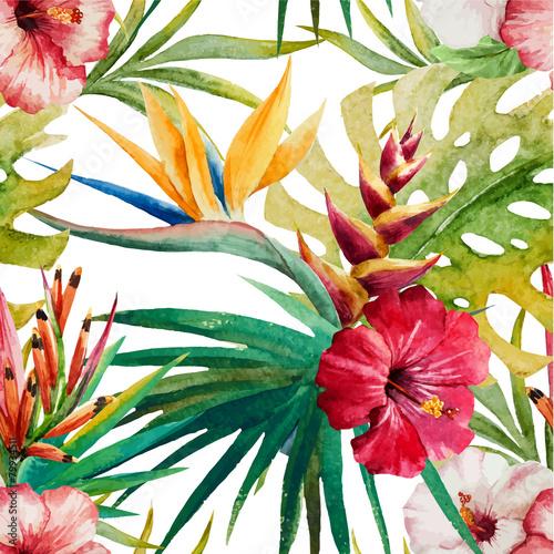 Sterlitzia tropical pattern - 79934511