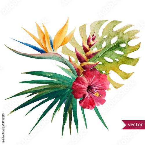 Nice tropical flowers - 79934525
