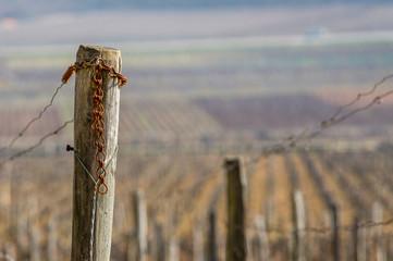 Terroirs de Bourgogne