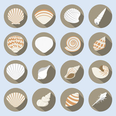 Sea Shell Flat Icons Set