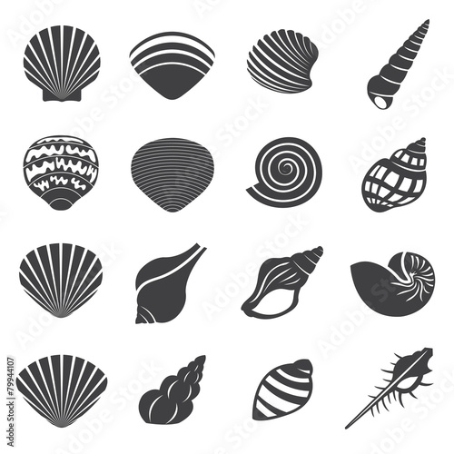 Sea Shell Flat Mono Icons Set - 79944107