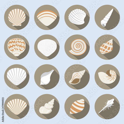 Sea Shell Flat Icons Set - 79944133