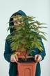 Man holding cannabis plant