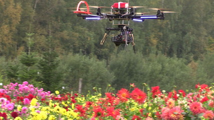 Octocopter copter with camera fly and shoot dahlia flowers