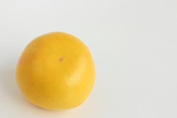 グレープフルーツ 裏向き