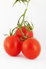 Grappolo di pomodori su sfondo bianco