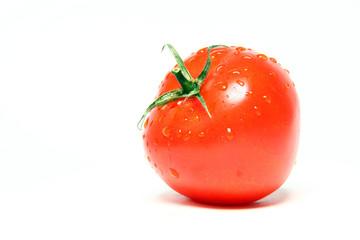 Bio Tomate