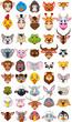 big animal head cartoon collection - 79955716