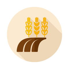 Ears of Wheat, Barley or Rye on Field flat icon