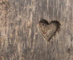 Heart shape cut in wood