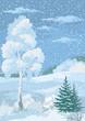 Christmas Winter Forest Landscape - 79961774
