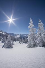 Winterlandscahft