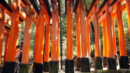 red gate torii at Fushimi Inari temple shrine in Kyoto, Japan