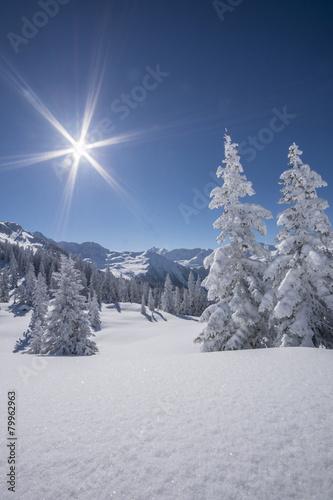 Tuinposter Alpen Winterlandscahft