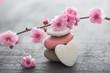 Leinwanddruck Bild - fleurs zen