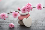 fleurs zen © Toanet