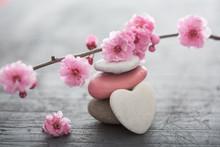 "Постер, картина, фотообои ""fleurs zen"""