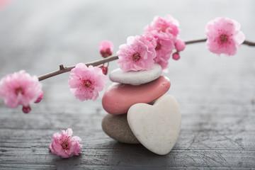 Zen kwiaty