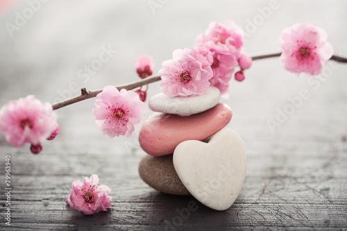 Foto op Canvas Zen fleurs zen