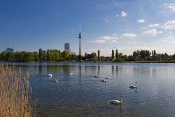 Skyline Wien mit Schwänen