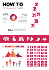 Human Body Infographic