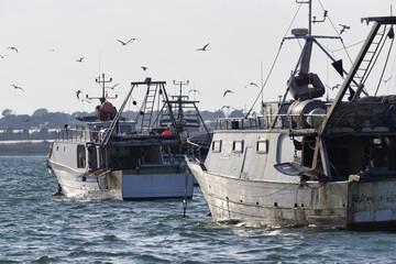 Italy, Portopalo di Capo Passero, fishing boats in the port