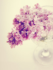 Branch with spring lilac flowers in a glass.