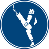 Taekwondo Fighter Kicking Stance Circle Icon