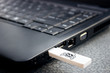 USB with viruses attached to a laptop - 79972150