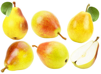 set of pears isolated on the white background