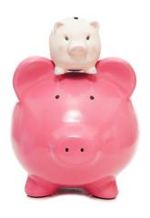 saving for your children piggy bank