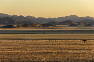 Afrika, Namibia, Sonnenaufgang, Tirasberge und Namib-Wüste