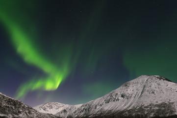 Norwegen, Troms, Ansicht der Aurora Borealis in der Nähe von TromsŅ