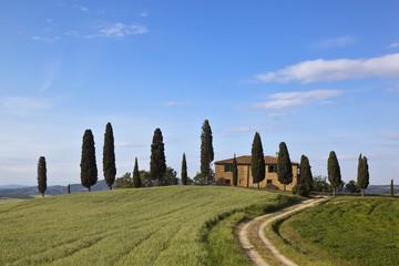 Italien, Toskana, Kreta, Blick auf Bauernhof mit Zypressen