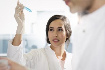 Wissenschaftler bei der Prüfung eines Tests