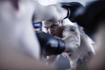 Zwei Boxer kämpfen