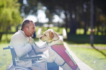 Mann im Rollstuhl mit Hund im Park