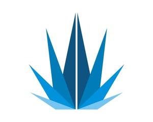 blue crown financial