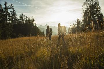 Österreich, Tirol, Tannheimer Tal, junges Paar wandern im Sonnenlicht auf Almwiese